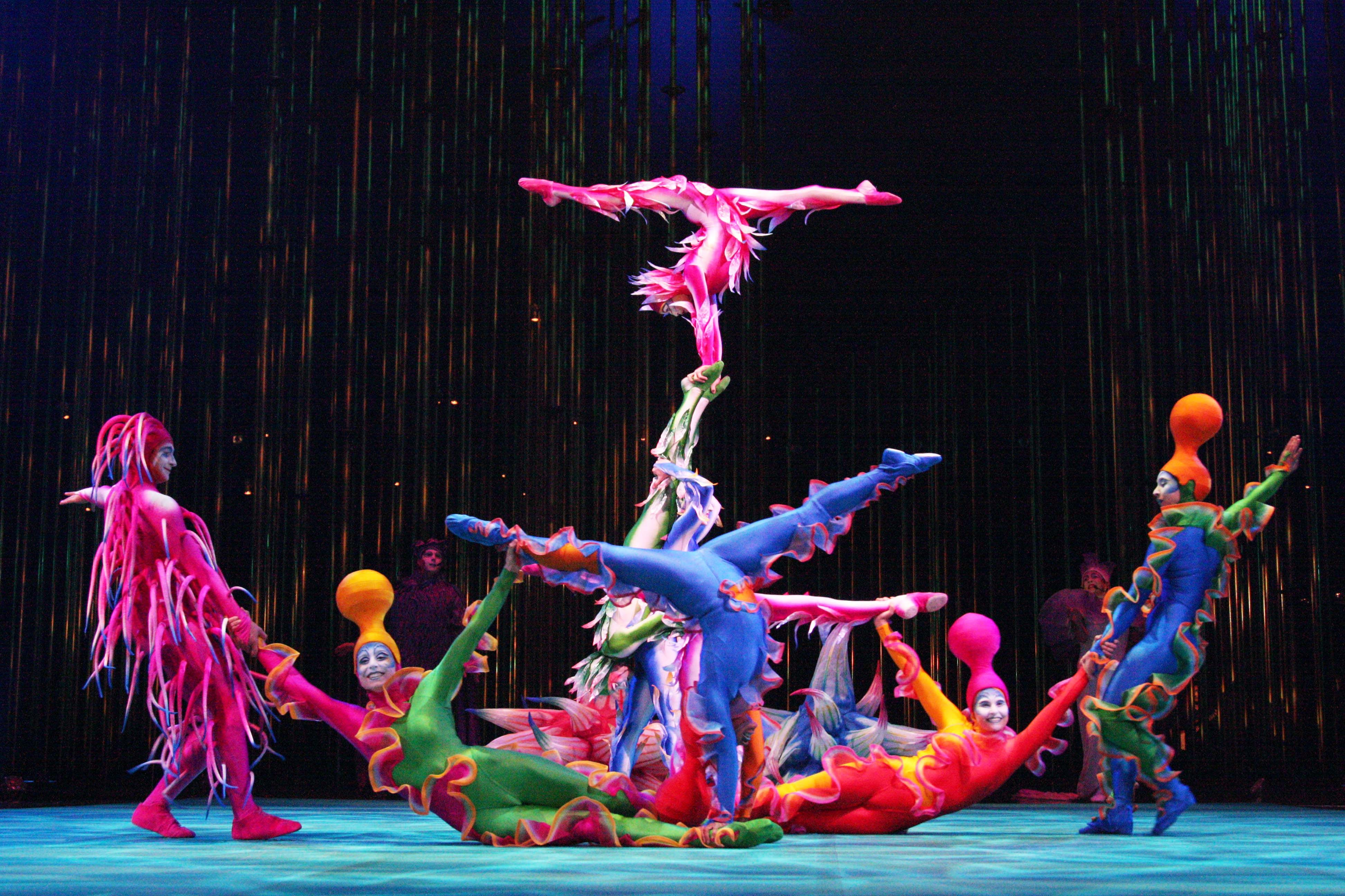 le cirque du soleil Details premium experience packages available cirque du soleil returns to the iconic royal albert hall in 2018 with its never before seen in the uk show, ovo a colourful carnival of crazy crickets, amazing ants and flexible fleas, ovo uncovers the natural world at our feet rush headlong into an ecosystem teeming with.