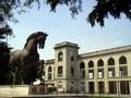 L'ippodromo di Milano e il cavallo di Leonardo